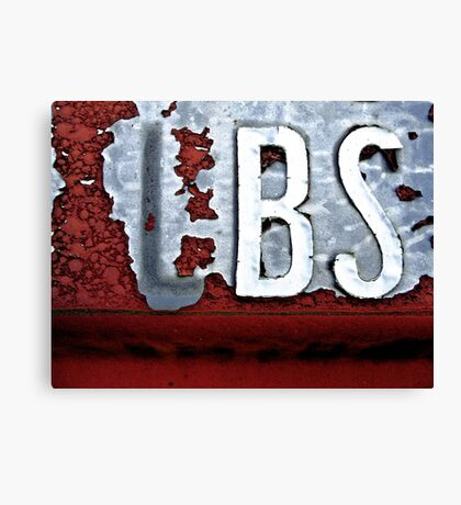 BS Canvas Print