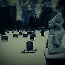The local graveyard in winter by trbrg