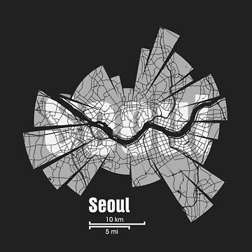 Seoul Map by UrbanizedShirts