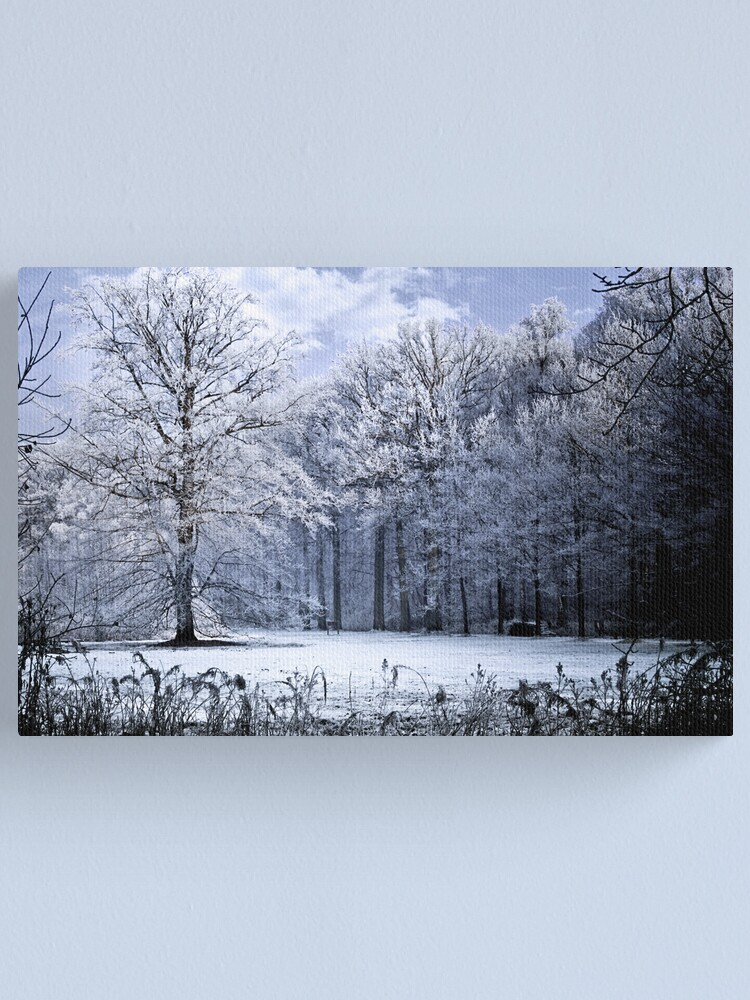 Alternate view of Moonlight Tree Canvas Print