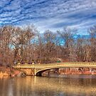Central Park by FLYINGSCOTSMAN