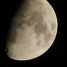 A Winter Moon by DavidWHughes