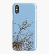 Waiting Patiently iPhone Case/Skin