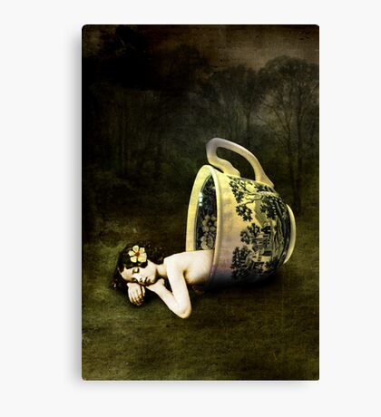 The teacup Canvas Print