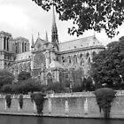 Notre Dame by Daniel McIntosh