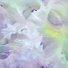 Light Touch of Tenderness. Petals Abstract by JennyRainbow
