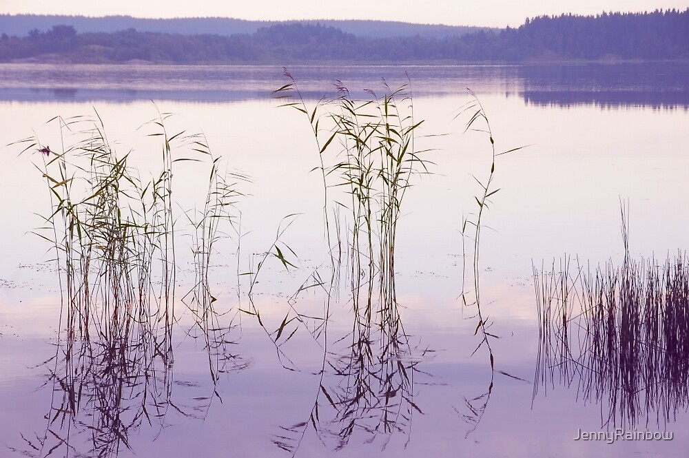 Morning Zen. Pearly Moments of Sunrise. Ladoga Lake. Northern Russia by JennyRainbow