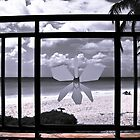 Beach & Balcony by andapanda