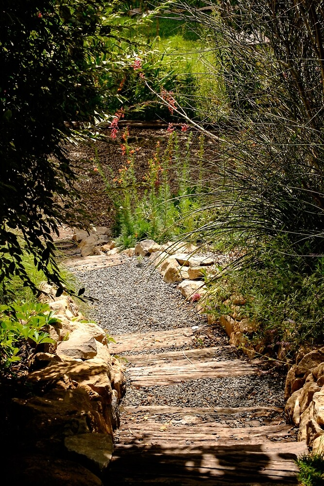 Rustic stairs in a garden by CBott