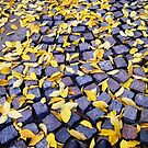 Yellow Leaves And Cobble Stones by carinacraftblog