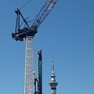 Sky Tower Auckland by Tom McDonnell