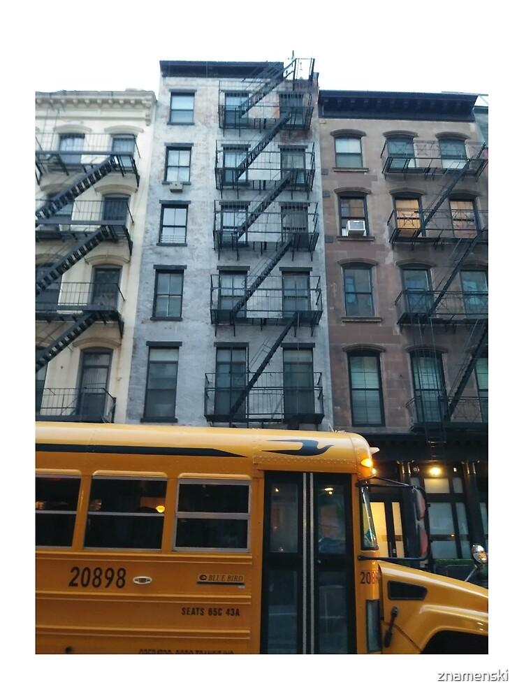Architecture, New York, Manhattan, Brooklyn, New York City, architecture, street, building, tree, car,   by znamenski