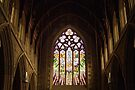 Stained Glass—St David's Cathedral Hobart by BRogers