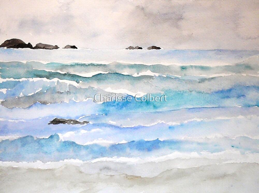 Washington Coast by Charisse Colbert