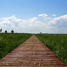 path by Qba from Poland