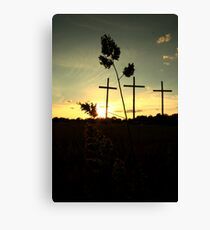 willow grove Canvas Print