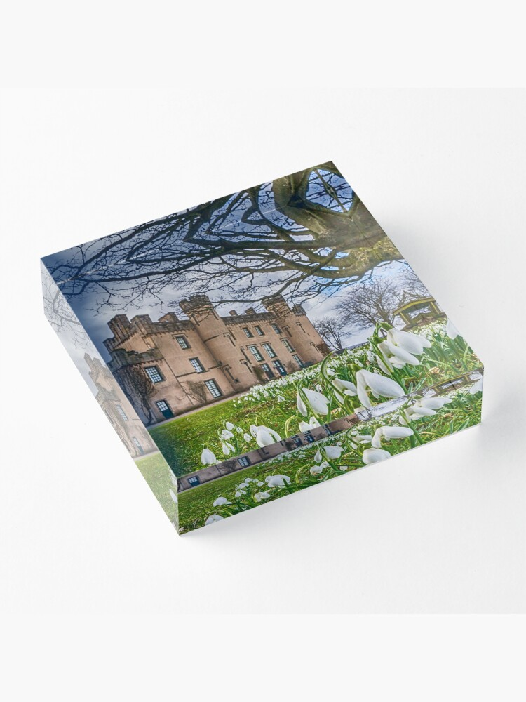 Alternative Ansicht von Schneeglöckchen im Haus der Binns Acrylblock