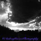 Black & White Landscape. © Dr.Andrzej Goszcz. by © Andrzej Goszcz,M.D. Ph.D