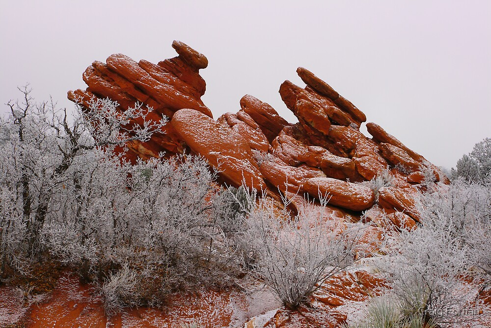 Garden of the Gods by Craig Forhan