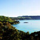 Tasmania's North Coast  by cjcphotography