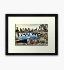 Sleepy Hollow.... Framed Print