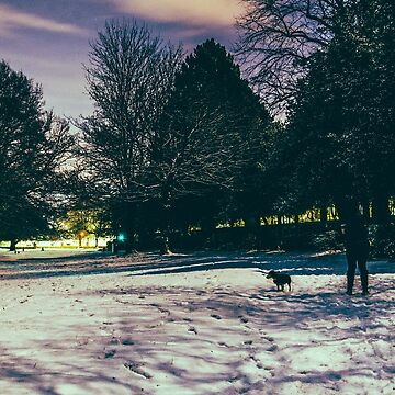 Endcliffe Park Snow by shanerounce
