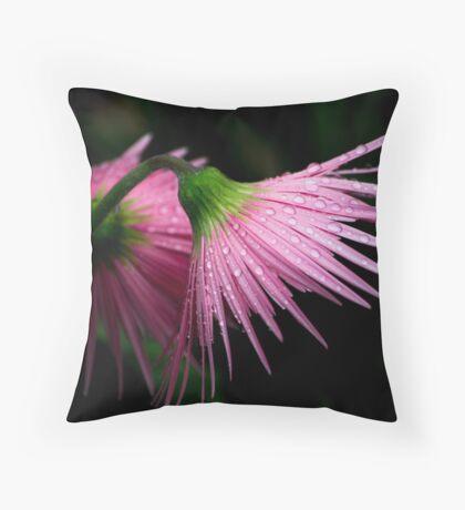 Pink Gerber Throw Pillow