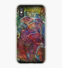 The Atlas Of Dreams - Color Plate 61 iPhone Case
