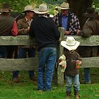 the littlest cowboy by Clare Colins