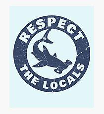 Respecter les requins marteaux locaux Impression photo