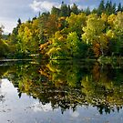 Loch Dunsmore reflection by tayforth