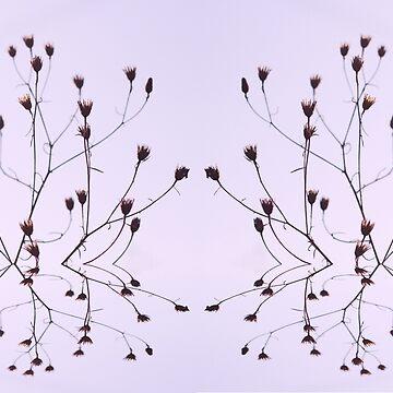 Flower Reflection by razzmatazzy