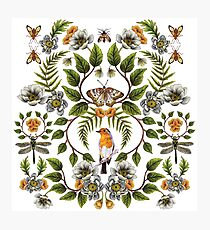 Spring Reflection - Floral/Botanical Pattern w/ Birds, Moths, Dragonflies & Flowers Photographic Print