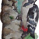 Woodpecker by pokegirl93