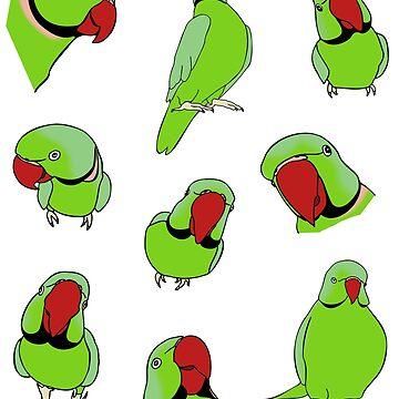green indian ringneck pattern by FandomizedRose
