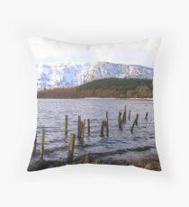 Snowy-Ness Throw Pillow