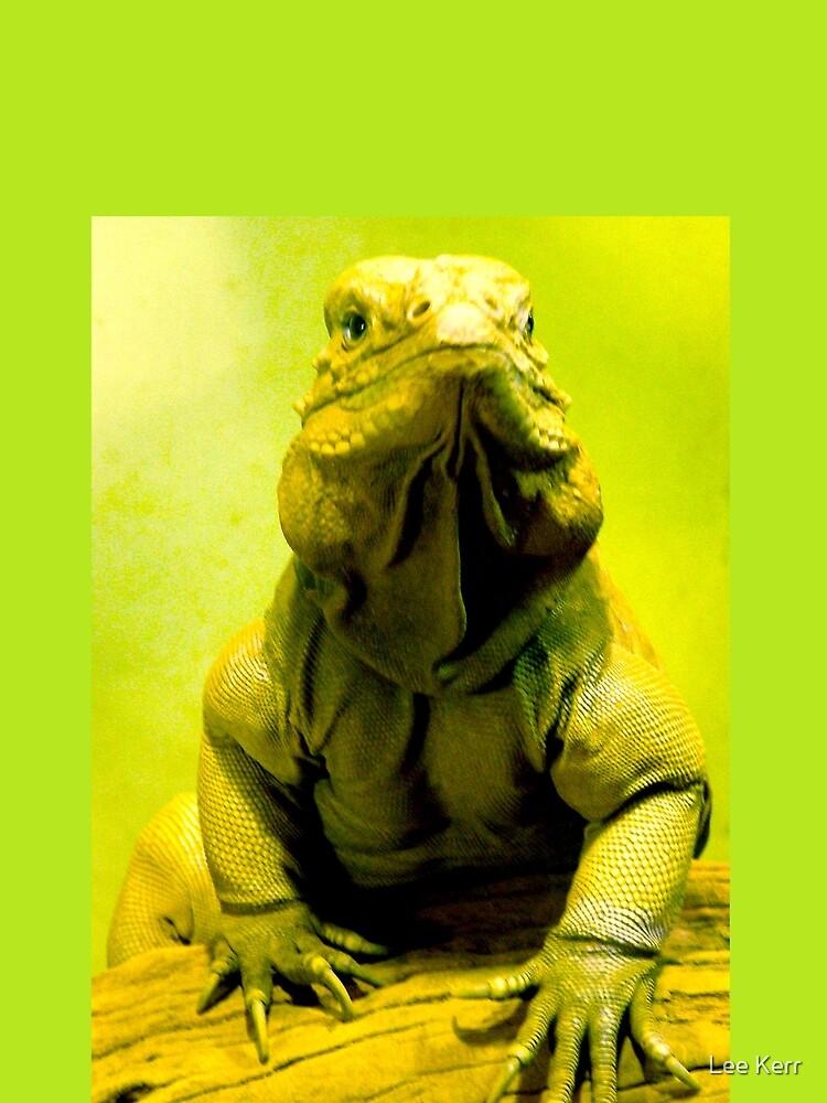 Iguana by leekier
