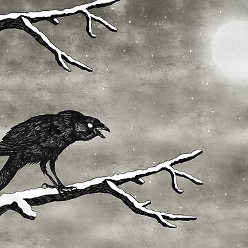 Crow in the Snow by djrbennett