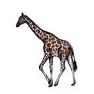 Giraffe by behughesuk