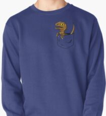 Lost world sweatshirts hoodies redbubble pocket raptor t shirt pullover gumiabroncs Images