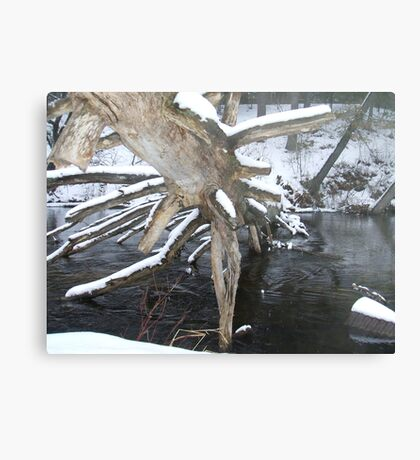 Dead Pines in the water Canvas Print