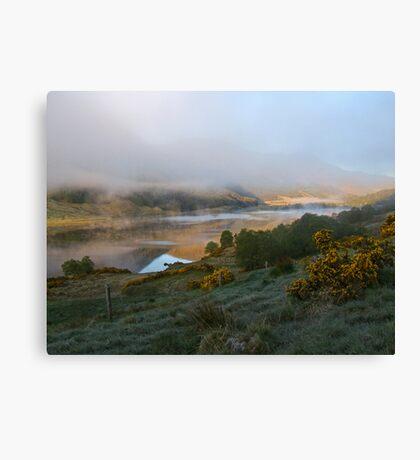 dawn mist rising  Canvas Print