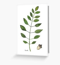 Sprig and Acorn Greeting Card