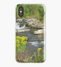 Wild Waters Tamed  iPhone Case