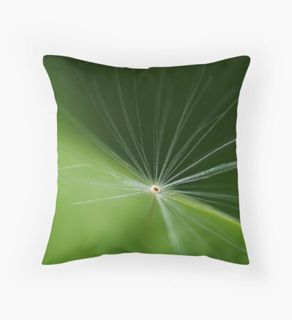 One lost Fairy Throw Pillow