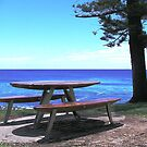 View From Burleigh Headland by Virginia McGowan