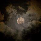 moonscape 2 by Chris Cohen
