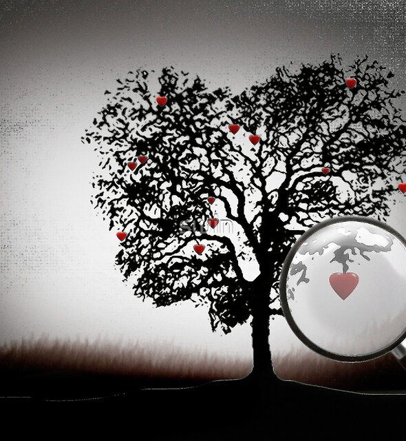 Love Tree von swin