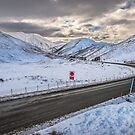 Lindis Pass by Alex Stojan