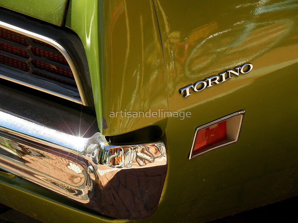 Chrome And Green With A Hint Of Red by artisandelimage